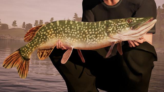 Первый симулятор рыбалки вышел на Xbox One
