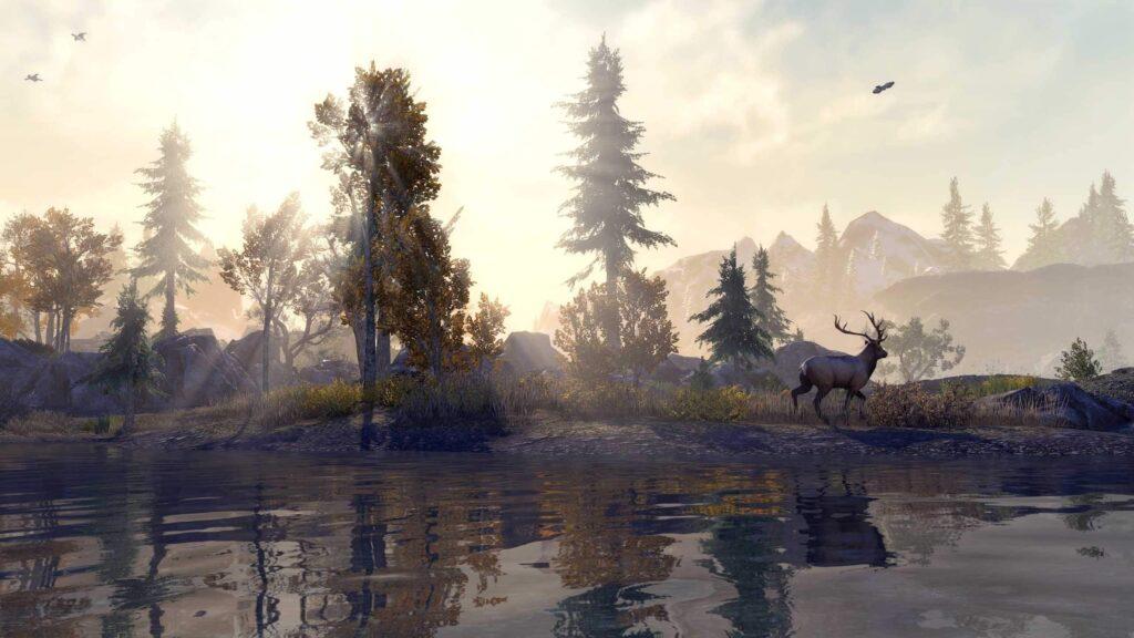 Разработчики The Elder Scrolls Online анонсировали новые графические улучшения на Xbox Series X | S